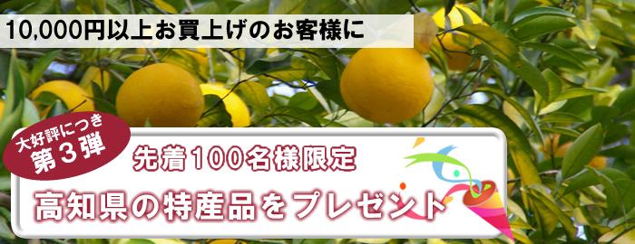 高知県の特産品プレゼント
